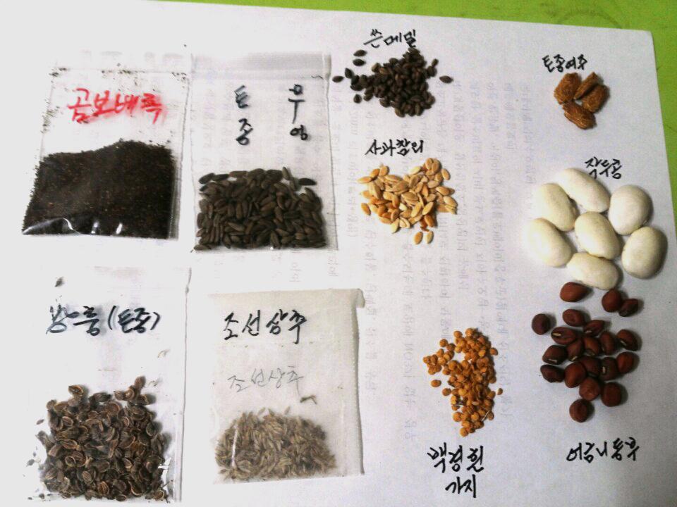토종씨앗들
